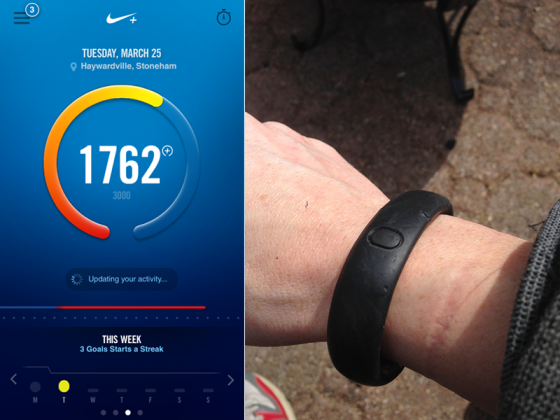 nike fuelband data for education